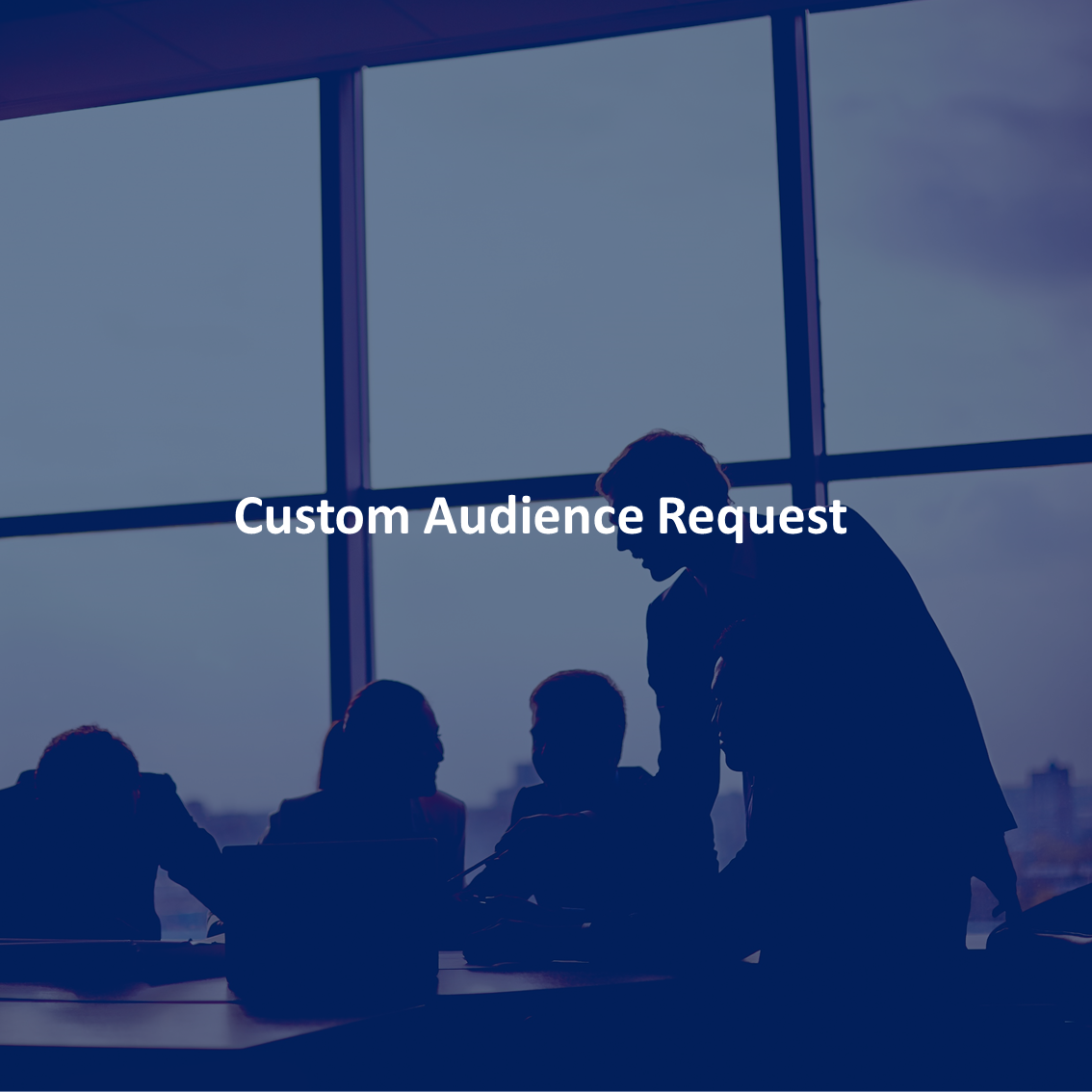 custom audience request